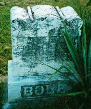 BOLE, WYLIE - Adams County, Ohio | WYLIE BOLE - Ohio Gravestone Photos