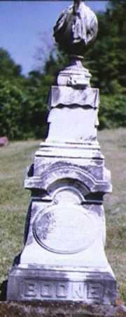 BOONE, HENRY HARRISON - Adams County, Ohio | HENRY HARRISON BOONE - Ohio Gravestone Photos
