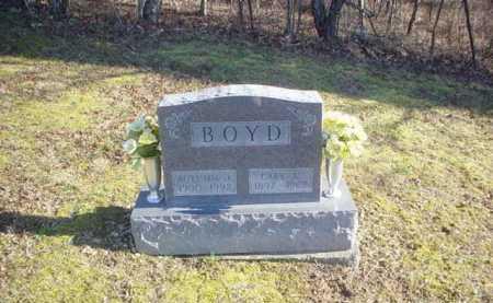 BOYD, CARY A. - Adams County, Ohio | CARY A. BOYD - Ohio Gravestone Photos