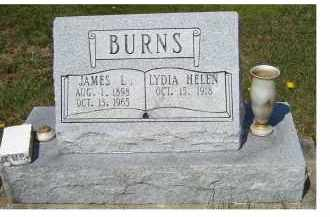 BURNS, JAMES L. - Adams County, Ohio | JAMES L. BURNS - Ohio Gravestone Photos
