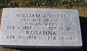 BUTTS, WILLIAM A. - Adams County, Ohio | WILLIAM A. BUTTS - Ohio Gravestone Photos