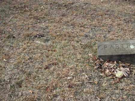 CADWALLADER, MARY JANE - Adams County, Ohio | MARY JANE CADWALLADER - Ohio Gravestone Photos