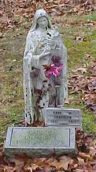 CHAMBLIN, CARL - Adams County, Ohio | CARL CHAMBLIN - Ohio Gravestone Photos