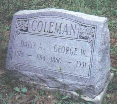 COLEMAN, DAISY A. - Adams County, Ohio | DAISY A. COLEMAN - Ohio Gravestone Photos