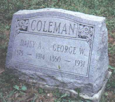 COLEMAN, GEORGE W. - Adams County, Ohio | GEORGE W. COLEMAN - Ohio Gravestone Photos