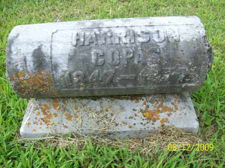 COPAS, WILLIAM HENRY HARRISON - Adams County, Ohio   WILLIAM HENRY HARRISON COPAS - Ohio Gravestone Photos