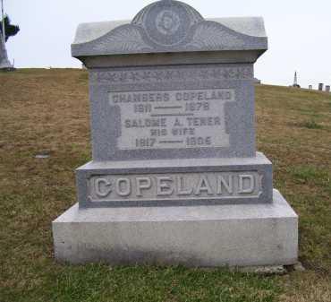 TENER COPELAND, SALOME A. - Adams County, Ohio | SALOME A. TENER COPELAND - Ohio Gravestone Photos