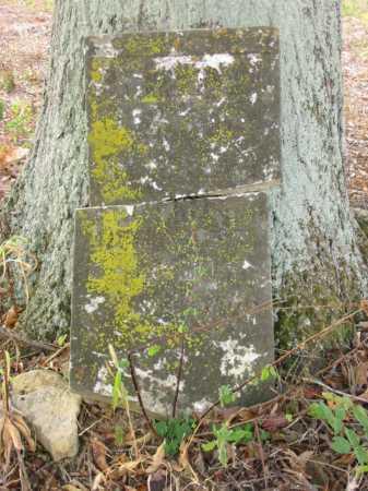 COPELAND, MARY - Adams County, Ohio | MARY COPELAND - Ohio Gravestone Photos