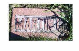 COX, MARTIN L. - Adams County, Ohio | MARTIN L. COX - Ohio Gravestone Photos