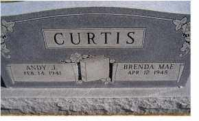 CURTIS, ANDY J. - Adams County, Ohio | ANDY J. CURTIS - Ohio Gravestone Photos