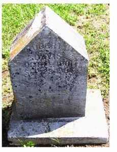 DAVIS, ROBERT - Adams County, Ohio | ROBERT DAVIS - Ohio Gravestone Photos