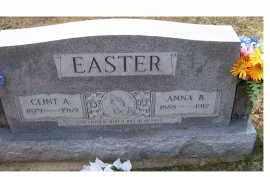 EASTER, CLINT A. - Adams County, Ohio | CLINT A. EASTER - Ohio Gravestone Photos