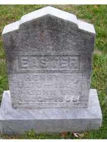 EASTER, JOHN W. - Adams County, Ohio | JOHN W. EASTER - Ohio Gravestone Photos