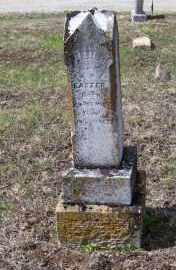 EASTER, WILLIE C. - Adams County, Ohio | WILLIE C. EASTER - Ohio Gravestone Photos