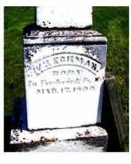 ECKMAN, WILLIAM - Adams County, Ohio   WILLIAM ECKMAN - Ohio Gravestone Photos