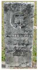 ELLISON, THOMAS - Adams County, Ohio | THOMAS ELLISON - Ohio Gravestone Photos