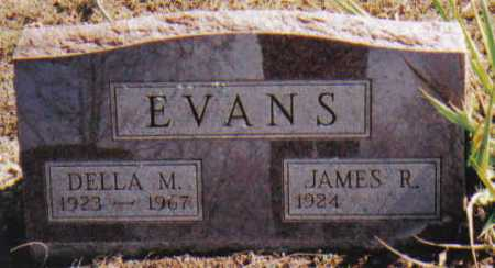 EVANS, JAMES R. - Adams County, Ohio | JAMES R. EVANS - Ohio Gravestone Photos