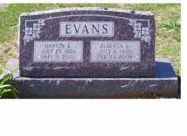 EVANS, MARVIN E. - Adams County, Ohio | MARVIN E. EVANS - Ohio Gravestone Photos