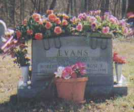 EVANS, ROSA - Adams County, Ohio | ROSA EVANS - Ohio Gravestone Photos