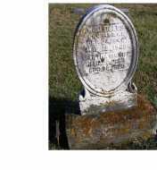 FIELDS, MARTHA - Adams County, Ohio | MARTHA FIELDS - Ohio Gravestone Photos