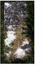 FINLEY, DAVID D. - Adams County, Ohio | DAVID D. FINLEY - Ohio Gravestone Photos