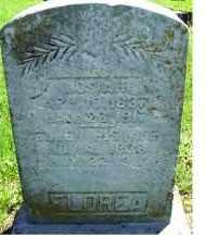 FLOREA, ELLEN - Adams County, Ohio | ELLEN FLOREA - Ohio Gravestone Photos