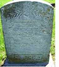 FLOREA, JOSIAH - Adams County, Ohio | JOSIAH FLOREA - Ohio Gravestone Photos