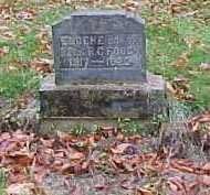 FOUCH, EUGENE - Adams County, Ohio | EUGENE FOUCH - Ohio Gravestone Photos
