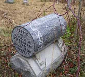 FREEMAN, RUBY E. - Adams County, Ohio   RUBY E. FREEMAN - Ohio Gravestone Photos
