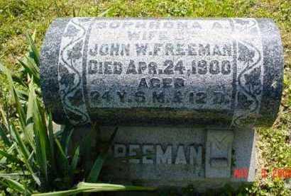 FREEMAN, SOPHRONA A. - Adams County, Ohio | SOPHRONA A. FREEMAN - Ohio Gravestone Photos