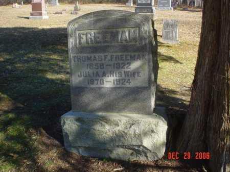 FREEMAN, THOMAS F. - Adams County, Ohio | THOMAS F. FREEMAN - Ohio Gravestone Photos