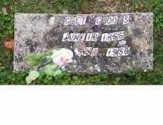 G_OO_S, ___ G_ET - Adams County, Ohio | ___ G_ET G_OO_S - Ohio Gravestone Photos