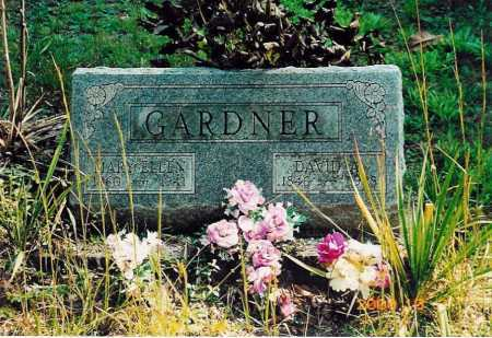 A GARDNER, DAVID - Adams County, Ohio | DAVID A GARDNER - Ohio Gravestone Photos