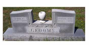 JOBE GROOMS, SYLVIA - Adams County, Ohio | SYLVIA JOBE GROOMS - Ohio Gravestone Photos