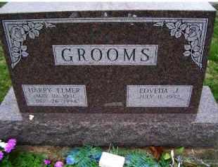 GROOMS, HARRY ELMER - Adams County, Ohio | HARRY ELMER GROOMS - Ohio Gravestone Photos