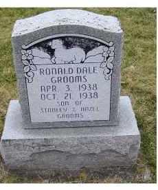 GROOMS, RONALD DALE - Adams County, Ohio | RONALD DALE GROOMS - Ohio Gravestone Photos