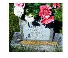 AYERS HACKATHORNE, AGNES A. - Adams County, Ohio | AGNES A. AYERS HACKATHORNE - Ohio Gravestone Photos