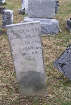 HAMITON, SUSANNAH - Adams County, Ohio   SUSANNAH HAMITON - Ohio Gravestone Photos