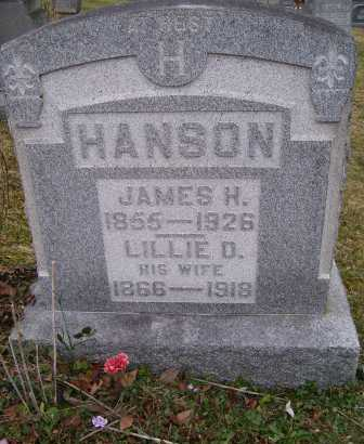 HANSON, JAMES H. - Adams County, Ohio | JAMES H. HANSON - Ohio Gravestone Photos