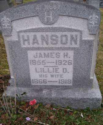 HANSON, JAMES H. - Adams County, Ohio | JAMES H. HANSON - Ohio Gravestone Photos
