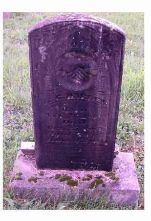 HARDIN, B.C. - Adams County, Ohio   B.C. HARDIN - Ohio Gravestone Photos