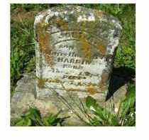 HARDIN, JOEL A. - Adams County, Ohio | JOEL A. HARDIN - Ohio Gravestone Photos
