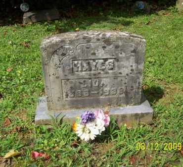 HAYES, LIDA - Adams County, Ohio | LIDA HAYES - Ohio Gravestone Photos