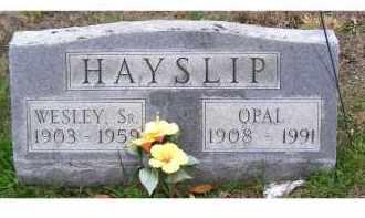 HAYSLIP, WESLEY SR. - Adams County, Ohio | WESLEY SR. HAYSLIP - Ohio Gravestone Photos