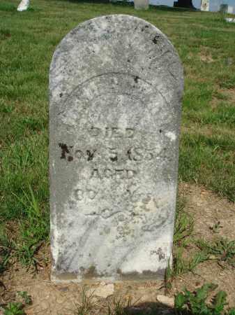 HERDMAN, HENRY - Adams County, Ohio   HENRY HERDMAN - Ohio Gravestone Photos