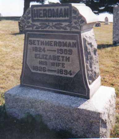 HERDMAN, ELIZABETH - Adams County, Ohio | ELIZABETH HERDMAN - Ohio Gravestone Photos