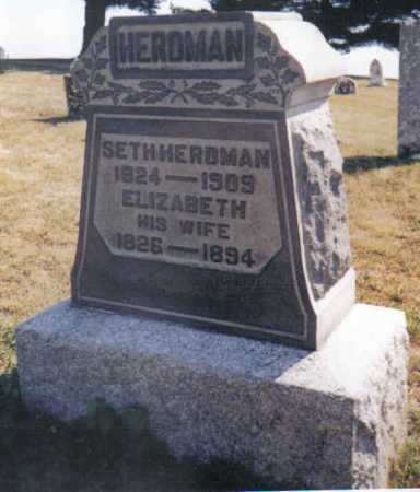 HERDMAN, ELIZABETH - Adams County, Ohio | ELIZABETH HERDMAN - Ohio Gravestone Photos