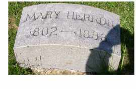 HERRON, MARY - Adams County, Ohio | MARY HERRON - Ohio Gravestone Photos