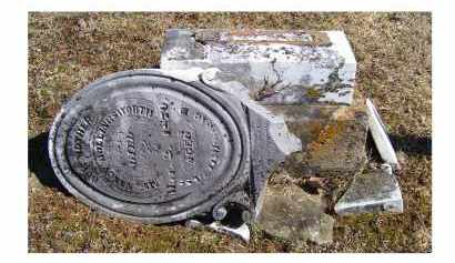 HOLLINGSWORTH, NANCY - Adams County, Ohio | NANCY HOLLINGSWORTH - Ohio Gravestone Photos