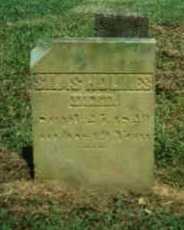 HOLMES, SILAS - Adams County, Ohio   SILAS HOLMES - Ohio Gravestone Photos